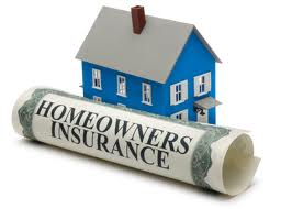 Homeowners Insurance Protection Image