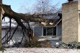 Natural Disasters and Real Estate Prices
